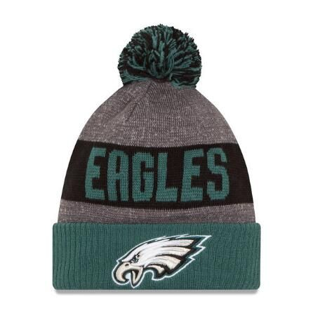 Eagles Wool Hat at Modell's
