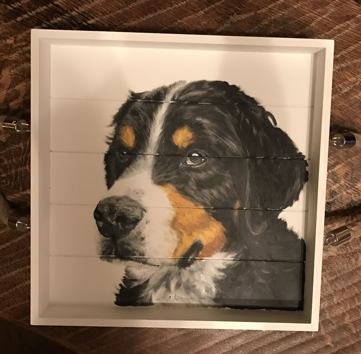 Colorfull dog, painted on a tray
