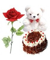 """1 Lb (1/2 Kg) Black Forest Cake with 6"""" Small Teddy and Single Red Rose"""