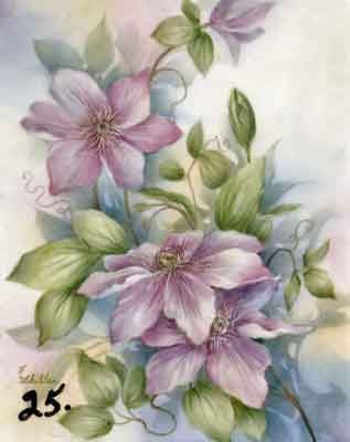 Study of Clematis for china painters and porcelain artists, available online in seminars and studies from Charlene Ferrell Whitler porcelain artist and teacher