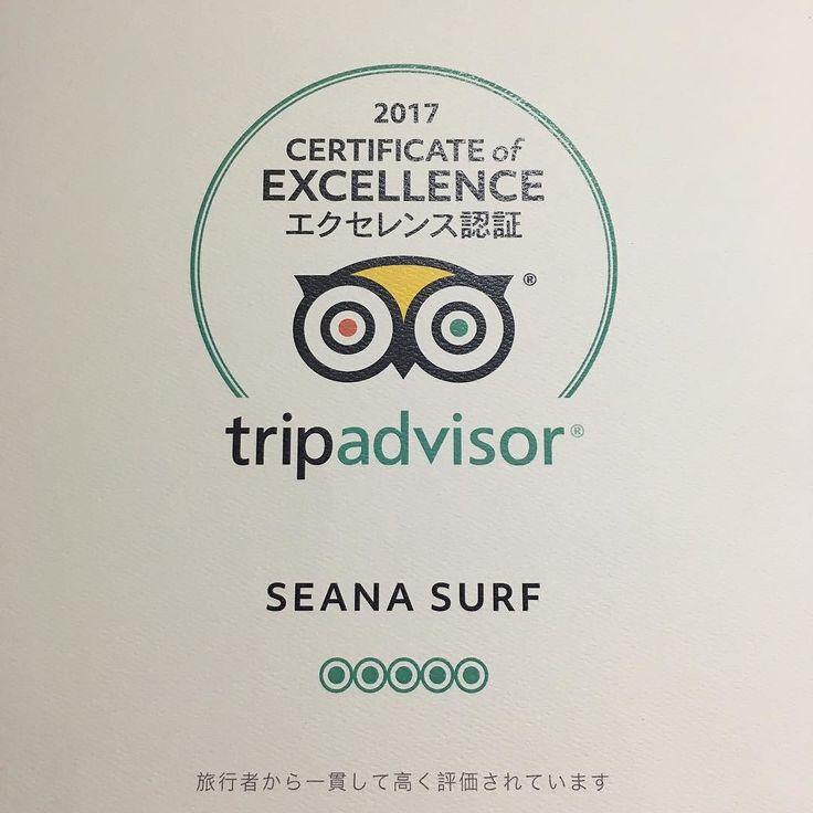トリップアドバイザーの名誉ある賞を受賞させて頂きました 今まで来て頂いたゲストの方々に感謝しつつこれからも精進して参ります #seanasurf #シーナサーフ #tripadvisor #トリップアドバイザー #受賞 #エクセレンス #excellence #ありがとうございます #沖縄 #okinawa #恩納村 #onnason #サーフィン #surf