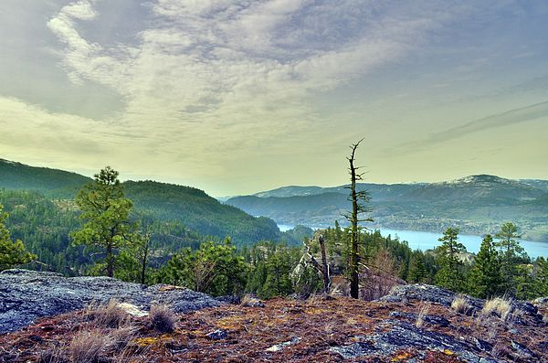 Peek-a-boo view of Skaha Lake from Wiltse Mountain in Penticton, BC Canada