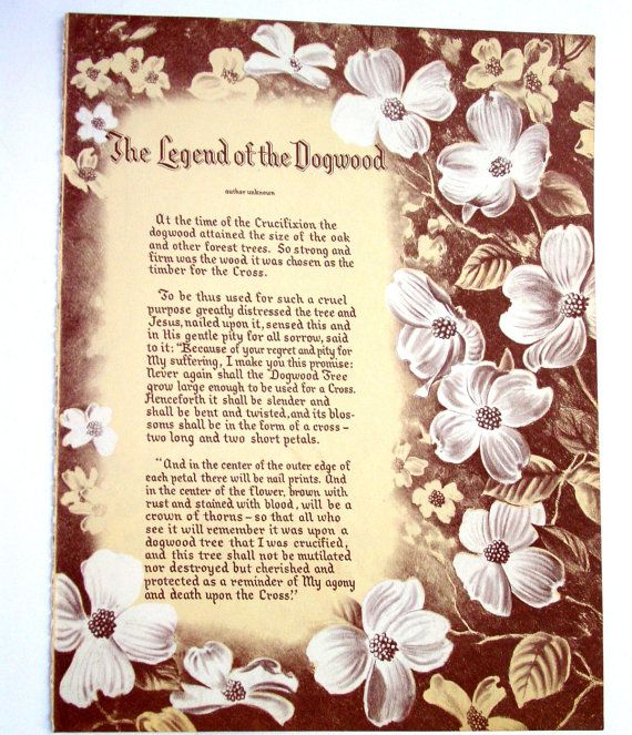Legend Of The Christmas Tree Poem: 1000+ Images About Dogwood Tree On Pinterest