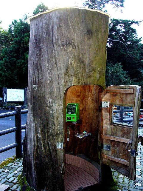 Tree phone