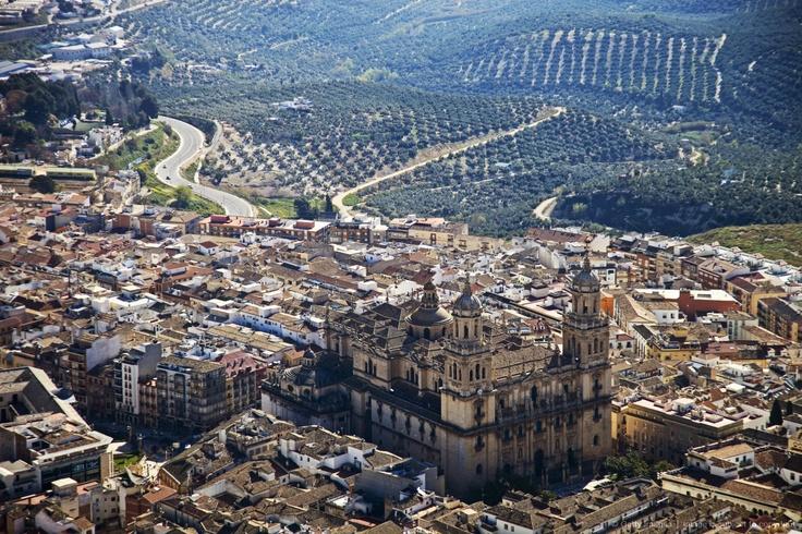 Spain, Andalucia, Jaen, Cano Quebrado, the Renaissance Jaen Cathedral in the centre of Jaen