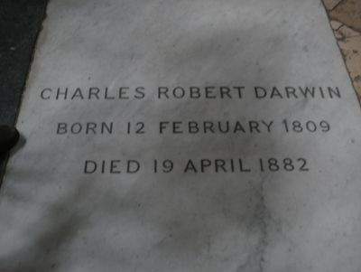 Grave Marker- Charles Robert Darwin, naturalist (Origin of Species). Darwin became internationally famous, and his pre-eminence as a scientist was honoured by burial in Westminster Abbey. http://www.thefuneralsource.org/deathiversary/april/19.html