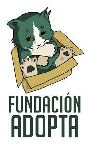 Fundación Adopta | Rescate, rehabilitación y reubicación de gatos abandonados.