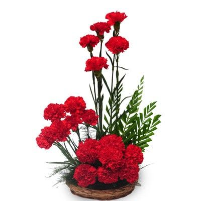 Check out our New Product  Passionate love Mothers Day A basket arrangement of 20 red carnations with green fillers  Rs.904