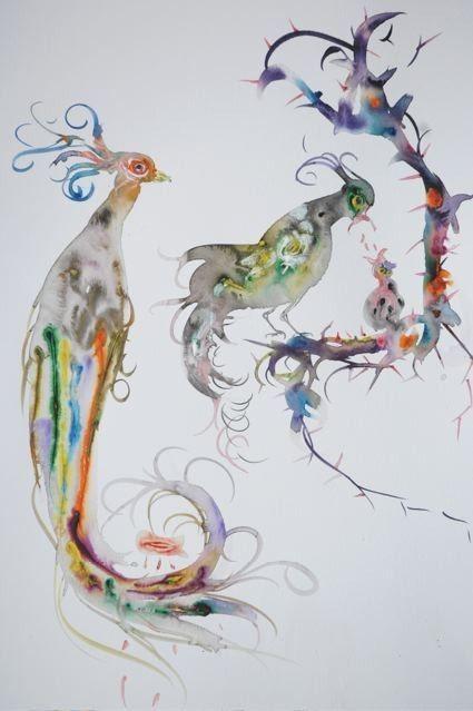 birds Marc Mulders