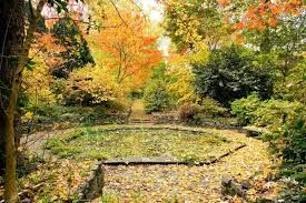 mawarra garden - Google Search