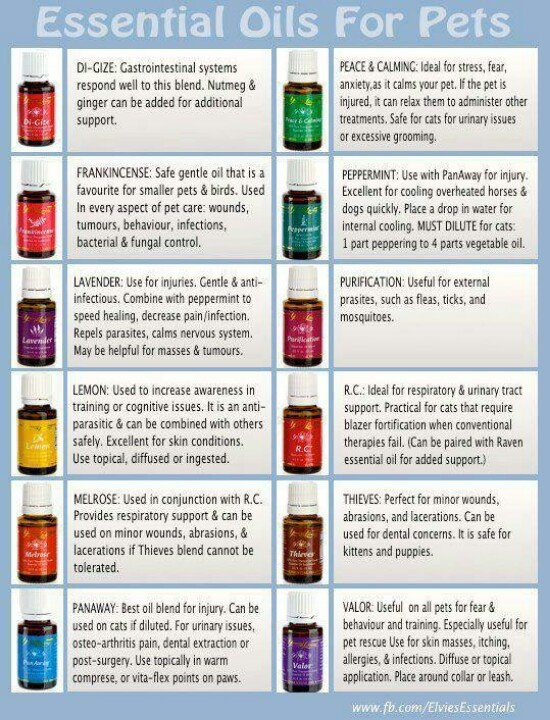 17 Best Images About Healing With Essential Oils On