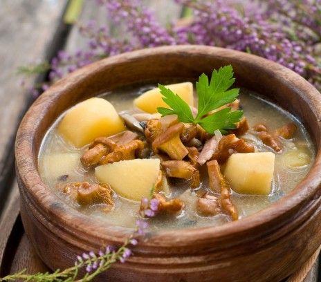 Zupa na kurkach - Przepisy - Magda Gessler - Smaki Życia