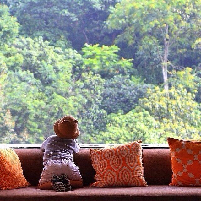 shot by @minggusbk taken at Padma Hotel Bandung -------- Padma Hotel Bandung adalah hotel 5-bintang terletak di kota Bandung yang menawarkan pemandangan pegunungan yang menakjubkan Kamar berlantai fitur kayu keras. tersedia TV layar datar 42 inci dan pemutar DVD. pemasak air untuk termasuk kopi / teh menyediakan Wi-Fi dan brankas serta pelayanan kamar 24-jam.  Belanja pilihan seperti Paris Van Java Mall dan Ciwalk Malla berada dalam waktu 15 menit berkendara dari hotel. Padma Bandung…