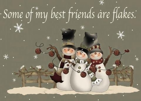 Wonderful Some Of My Best Friends Are Flakes Funny Quotes Cute Friendship Quote  Winter Friendship Quotes Funny Quotes Humor Snowmen Winter Quotes