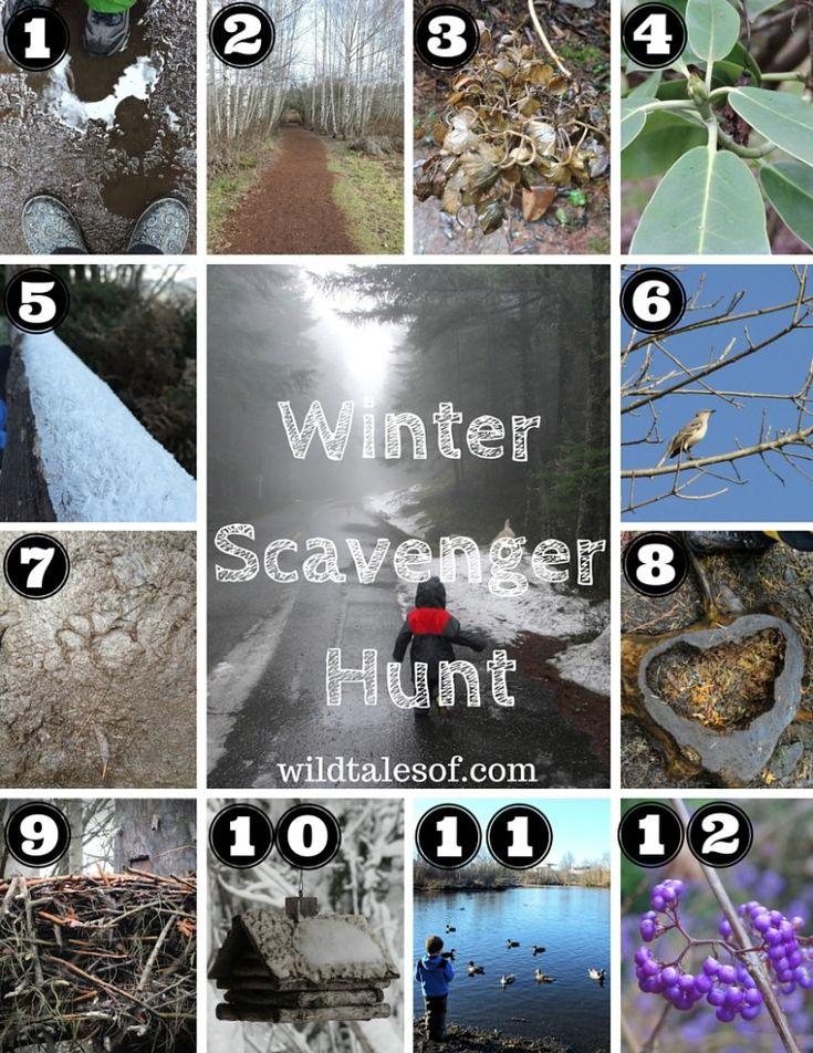 Winter Scavenger Hunt (with Printable) for Kids |WildTalesof.com