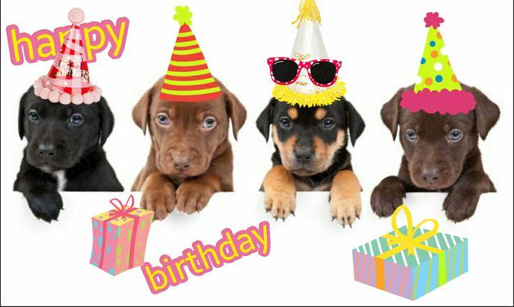 Happy birthday puppy's!