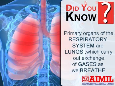 #DoYouKnow? Primary organs of the #RespiratorySystem are #Lungs, which carry out exchange of #gasses as we #breathe.  #RespiratoryDiseases #UpperRespiratoryInfection #ChronicCoughCauses #CoughAyurevdicTreatment #TicklyCoughTreatment  For more information, visit : https://goo.gl/QJrQH2