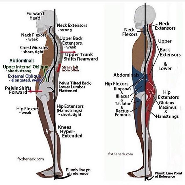 The first thing we do after we fix your diet is correct your postural deviations through exercise interventions. These posture exercises then carry over to all your major push/pull motions. Come train with me and let me be your teacher! Wherever you're at, I guarantee you'll benefit: Joey@EDjGE.com SUBJECT: LA Based Training! Email now to book summer sessions!! #latrainer