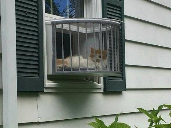 The Cat Solarium Has Been Called The Must Have Cat Product By Some Of The Top Cat Bloggers Around The World Cats Love Basking Cat Window Cat Patio Indoor Cat