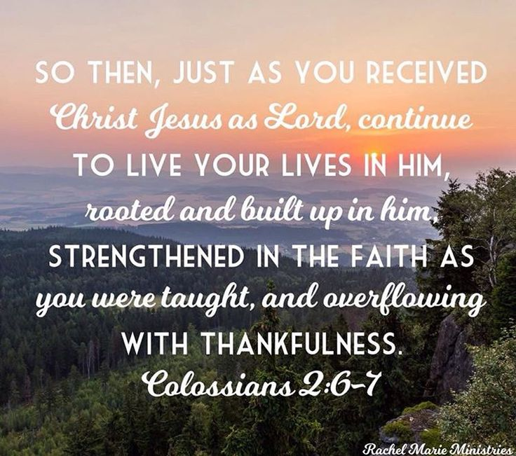 So then, just as you received Christ Jesus as Lord, continue to live your lives in him, rooted and built up in him, strengthened in the faith as you were taught, and overflowing with thankfulness. - Colossians 2:6-7 NIV