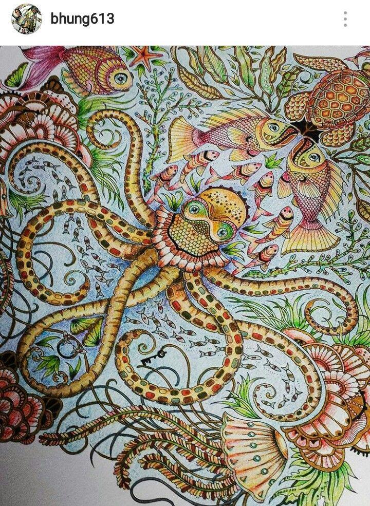 Adult Coloring Books Secret Gardens Colored Pencils Prismacolor Johanna Basford Book Garden Amazing Artwork
