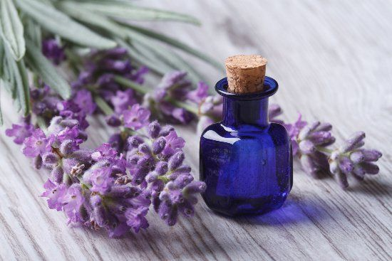 Lavender oil benefits go way beyond helping you relax. Here are 10 lavender oil uses to combat life's peskiest home, beauty, and health problems.