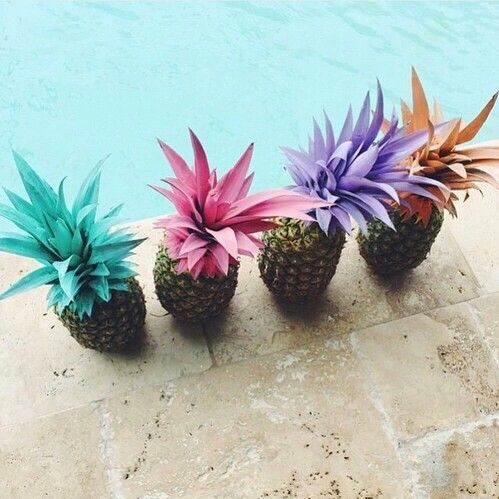Pineapples by the pool. @thecoveteur