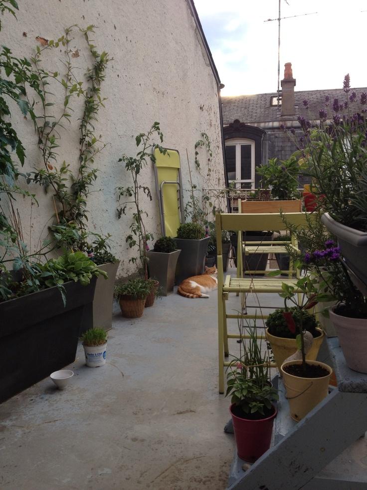 Les 176 meilleures images propos de terrasses balcons - Potager sur balcon terrasse ...