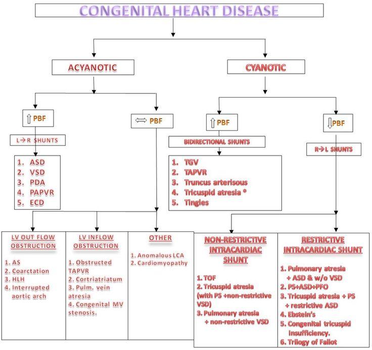 Custom Complex Congenital Heart Disease Essay