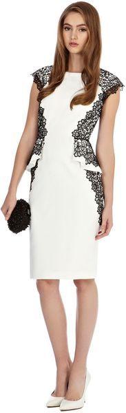 Coast Ashton Dress in Floral - Lyst