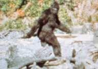Bigfoot - Unexplained Mysteries Encyclopedia