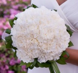 A Central Park Wedding | Get Married in NYC Winter Wedding Flowers ...