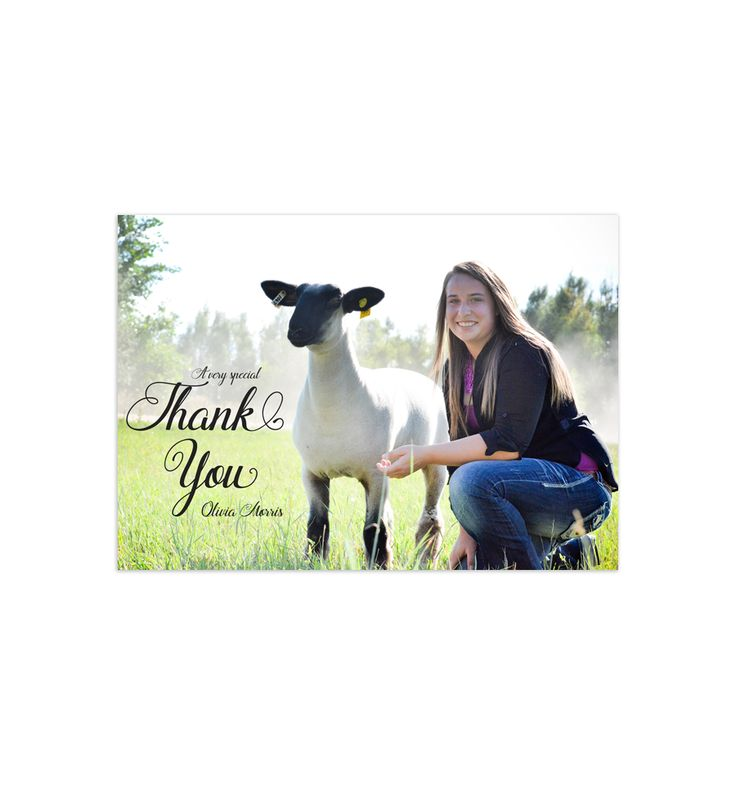 Custom Stock Show Photo Thank You Cards