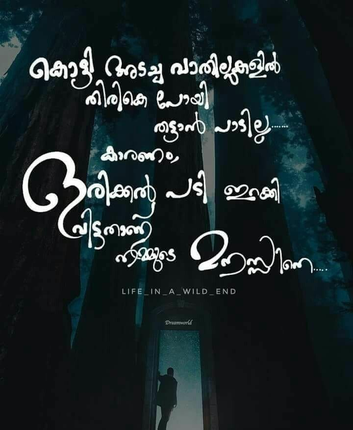 Malayalam Love Pudse Get Lost: 317 Best Malayalam Quotes Images On Pinterest