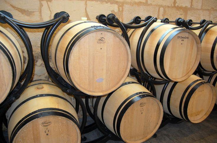 WineChef - Vinho e Gastronomia em Perfeita Harmonia | Sabe a diferencia entre ácido málico e ácido láctico?