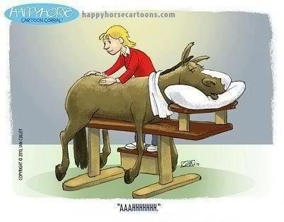 Kuvahaun tulos haulle massage horse funny meme