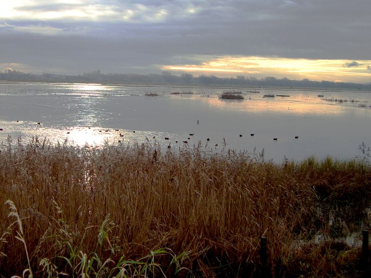 RSPB at Marshside, Southport - near Liverpool