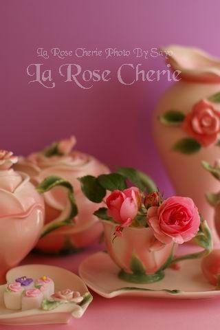 La Rose Cherie(ラ・ローズ・シェリー)ローズ