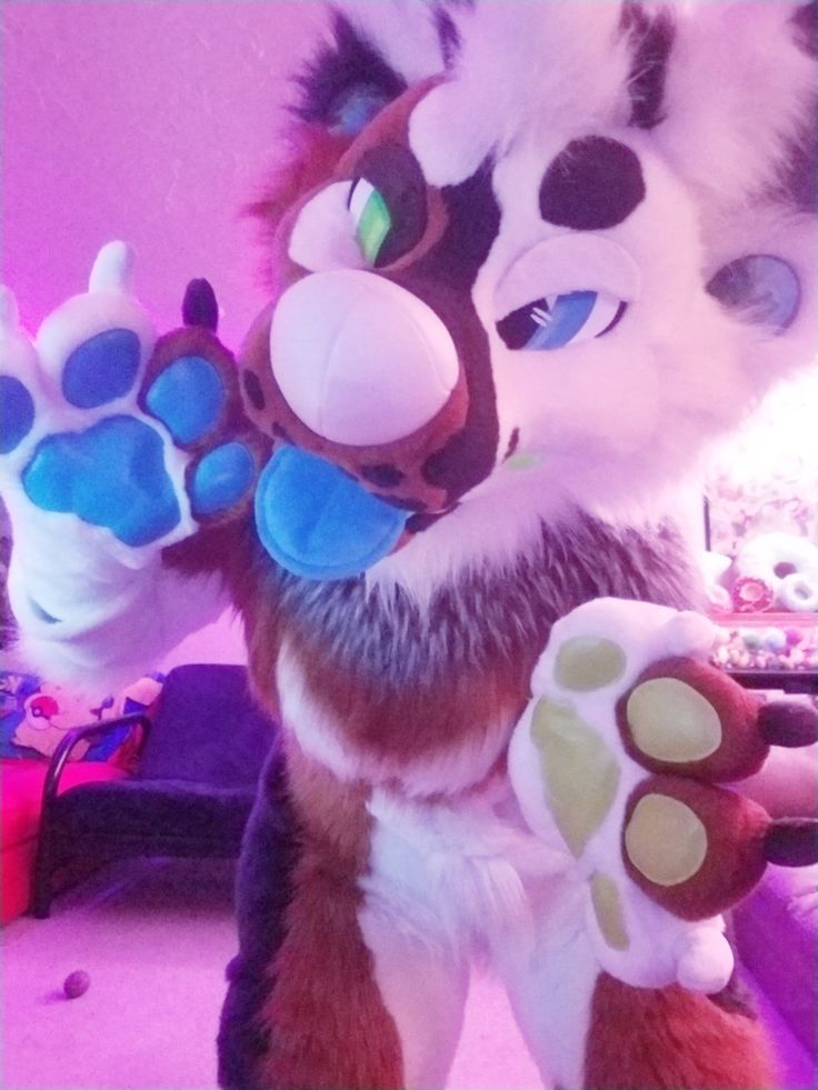 Love this fursuit, not mine though just love it