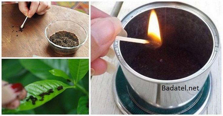 Aj vy po dopití tureckej alebo prekvapkávanej kávy použité zvyšky vyhadzujete? Pozrite sa, čo všetko by ste s nimi ešte dokázali urobiť.