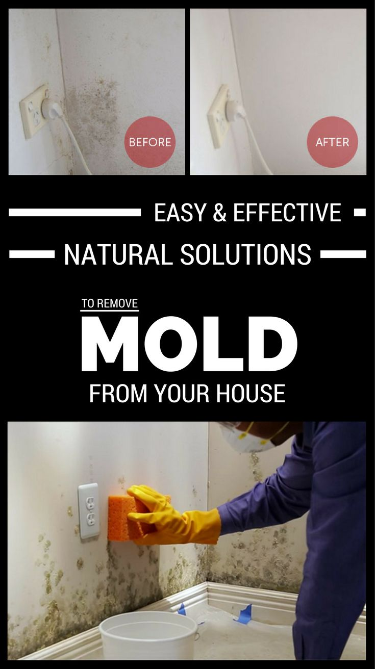 how to get mold out of clothes naturally