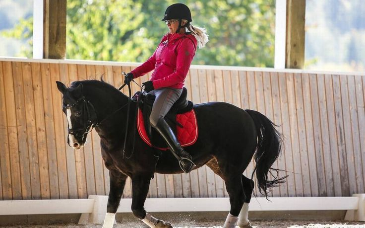 """""""Horses are my passion. I live, I breathe, I think horses,"""" Erikson said.   #PassionForHorses #EquestrianNews #BreastCancer"""