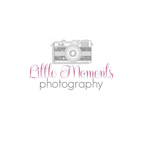 ON SALE-Premade Photography Logo and Watermark-Little Moments