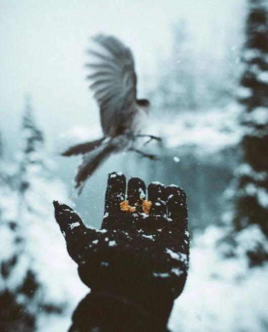Верить в завтра наперекор всему  и быть благодарным за вчера -  вот самое главное.! В остальном надо просто жить!