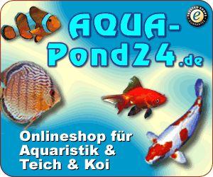(2) #Aquarien, #Aquaristikzubehör, #Teichzubehör, #Terraristik #Heimtierbedarf - Tackk
