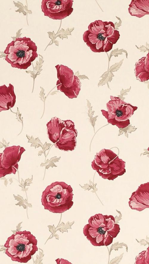 roses on tan background wallpaper (luadevenus)                                                                                                                                                                                 Mais