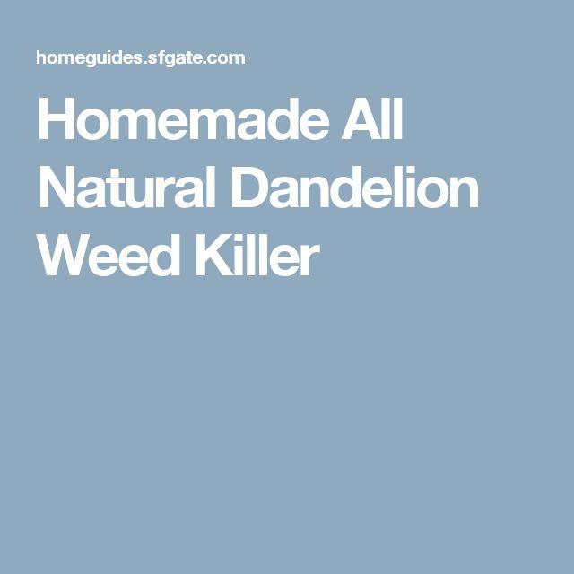 Homemade All Natural Dandelion Weed Killer
