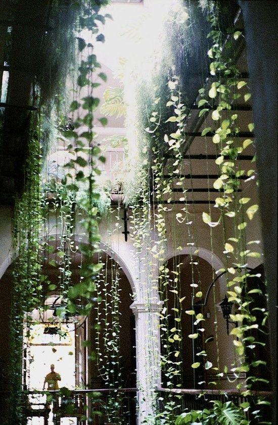 heavenly waterfall! Hanging gardens of Babylon