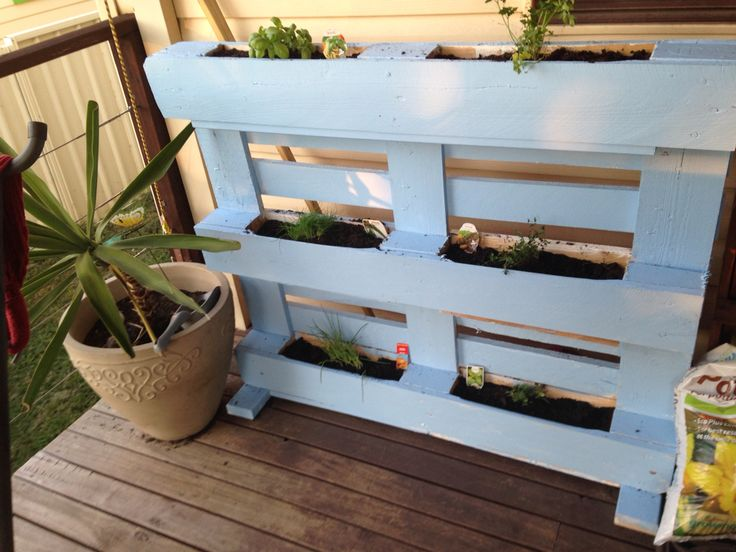 Use an old pallet for a vertical veggie for herb garden