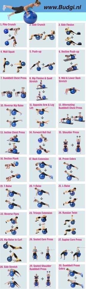 sportoefeningen-sportschema-sportbal-fitnessbal-budgi